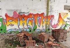 StreetArt_050 (Ragnarok31) Tags: streetart street art urban tag tags graff graffs graffiti graffitis graffitti graffittis peinture peintures dessins dessin