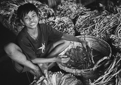 Boy Selling Dried Fishes, Ngapali, Myanmar (Eric Lafforgue) Tags: abundance asia asian blackandwhite boy burma business child day developingcountries foodanddrink forsale frenchindochina grainy horizontal lookingatcamera market marketstall myanmar ngapali oneperson photography retail sale seller selling shopping smiling southeastasia teenager traveldestinations trix leicaburma230 rakhinestate
