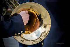Reflejo dorado (sebastianburoncervantes) Tags: reflejo mano instrumentomusical azul musica instrumentodevientometal vientometal instrumento trompa cornofrances viento musico