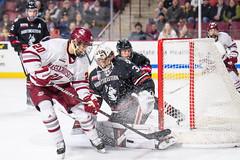 UMass Hockey vs. Northeastern 1-59 (dailycollegian) Tags: umass hockey ice college sports mullins center minutemen northeastern win east oliver chau carolineoconnor