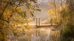 Brume de Sérénité au Lever du Soleil (JDS Fine Art Photography) Tags: nature sunrise light illumination beauty inspirational naturesbeauty mist winter cold misty