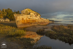 Point Reyes (allentimothy1947) Tags: ca pointreyes boats morning tomalesbay boat ship wreck grounded beached sunrise water inverness california photographed destroyed sky clouds houses plants trees reflections