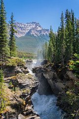 Athabasca Falls (Eline Huizenga) Tags: canada alberta athabasca falls waterval rocky mountains
