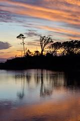 Big Talbot (automotiveshutter) Tags: nikon stateparks florida landscape conservation nature