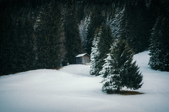 Winter Wonderland (der_peste (on/off)) Tags: snow tree landscape cottage hut barn winter tirol austria