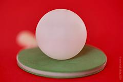 PINGPONGBAL & BATJE || PING-PONG-BALL & RACKET (Anne-Miek Bibbe) Tags: baklbat tabletennis tafeltennis pingpong batje racket tennisdetable sportderaquette ballepingpang pingpangqiu balledetable tischtennis tischtennisschläger tischtennisball pingpongbal macromondays macro happymacromonday intendedcontact speelgoed toy spielzeug giocattoli juguetes bringuedos jouets canoneos700d canoneosrebelt5idslr annemiekbibbe bibbe nederland 2018 dollshouseitem dollhouse ping p dollhousepingpong