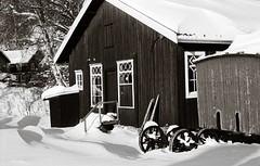 Eidsfoss (Geir Bakken) Tags: beltica cludor black white snow winter norway fx39 ilford delta analog analogue analogphotography film filmisnotdead filmphotography ilovefilm house 135 carlzeissjena tessar