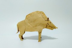 猪神 (guangxu233) Tags: origami origamiart paper paperart paperfolding art 折纸 折り紙 折り紙作品 handmade kamiyasatoshi