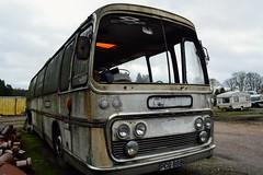 PCG888G (PD3.) Tags: england uk bus buses psv pcv flexford north baddersley chandlers ford hampshire hants classic preserved pcg888g pcg 888g coliseum coaches coach plaxton panorama elite aec reliance southampton