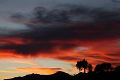 Sunset 12 23 18 #14 (Az Skies Photography) Tags: sunset sun set dusk twilight nightfall sky skyline skyscape cloud clouds red orange yellow gold golden salmon black december 23 2018 december232018 122318 12232018 rio rico arizona az rioricoaz arizonasky riorico arizonaskyline arizonaskyscape canon eos 80d canoneos80d canon80d eos80d