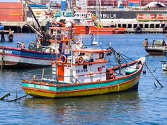 Botes pesqueros en el fondeadero del puerto. (Andres Bertens) Tags: 5960 olympusem10markii olympusomdem10markii olympusm40150mmf4056r olympusmzuikodigitaled40150mmf4056r rawtherapee olympusmzuikodigitaled40150mm sanantonio clsai fishingboat