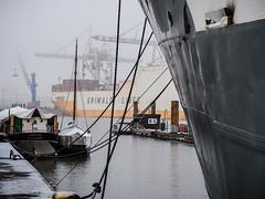 Grimaldi (Peter Glaab) Tags: elbe fähre grimaldilines hafen hamburg hansahafen kräne nebel olympus seile stahl veddel wasser zuiko schiff 45mm cranes ferry winter