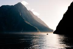 Milford sound NZ (Joeydarkroom) Tags: milford sound milfordsound fjord newzealand nouvellezélande extérieur water eau montagne