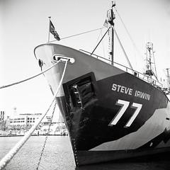 Sea Shepherds #2 (thepurpleghost) Tags: mamiya c220 tlr kodak tmax100 d7613 film analogue blackwhite bw monochrome 120 mediumformat 6x6 unmeteredcamera 65mm 65mmsekorc melbourne docklands ship seashepherds