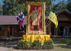 53419-Khao-Yai (xiquinhosilva) Tags: 2017 dongphayayen hintung khaoyai mueangnakhonnayokdistrict nationalpark park thailand unescoworldheritage tambonhintung changwatnakhonnayok th