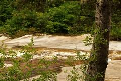Edge of the Rapids (RockN) Tags: rapids stream august2016 baxterstatepark maine newengland