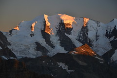 Sunset light on Piz Palü (echumachenco) Tags: mountain mountainside rock face ridge crest peak summit ice snow glacier dreitausender pizpalü berninagruppe alps outdoor landscape evening sunset muntpers sky graubünden grisons switzerland schweiz suisse svizzera suiza nikond3100