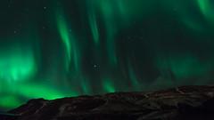 Nothern lights in Iceland (Florianmnsnt) Tags: nothernlights aurorepolaire aurora auroreboréale aurores iceland reykjavik