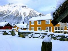 Oker tun -|- Ocher yard (erlingsi) Tags: erlingsi iphone erlingsivertsen rekkedal ørstakommune tun yard winter vinter snø snow