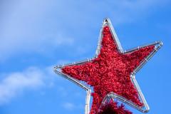 Red Christmas Star (MarkusR.) Tags: d722760 mrieder markusrieder stuttgart germany wilhelma zoologischergarten zoo park botanischergarten zoologicalgarden botanicalgarden nikon d7200 nikond7200 christmasstar weihnachtsstern decoration dekoration weihnachten christmas