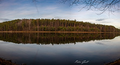 Reflections 1298 Panorama (Peter Goll thx for +10.000.000 views) Tags: pond erlangen d850 landscape landschaft dechsendorf weiher spiegelung nikkor giesbethweiher lake nikon 28300mm reflection