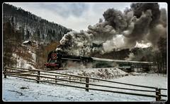 ČD 475 179_Sokolov_Czechia (ferdahejl) Tags: čd475179 sokolov czechia dslr canondslr canoneos40d dampflok steamlocomotive railway eisenbahn