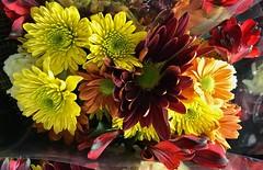 Basha's Floral Bouquet💐 (Chic Bee) Tags: basha'sfloralbouquet💐 basha supermarket floralarrangements tucson arizona usa northamerica