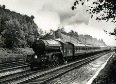 Winchfield 6.6.53 (robmcrorie) Tags: winchfield v2 gresley lner 60917 1953 1950s steam train rail railway monochrome locomotive
