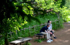 Sometimes, it's the silence that speaks volumes ! (Sriini) Tags: couple romance romantic park green light sundaylights silence quiet colors dof depth field leaves bench nikon nikkor city tokyo japan man lady boy girl