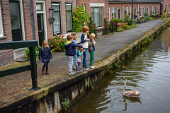 Abcoude (Julysha) Tags: abcoude 2015 d810 acr nikkor247028 thenetherlands october autumn people children swan river angstel houses