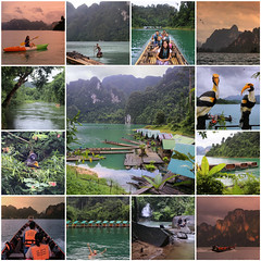 Exploring National Park Khao Sok (B℮n) Tags: fdsflickrtoys collection best mosaic thailand three rocks karst formations landmark เขาสก khao sok national park jungle oerbos wildlife south surat thani wild mammals mountains virgin oldest forest rainforest sandstone limestone mountain 950m monsoon rain erosion asian elephant tiger sambar deer bear guar banteng serow boar langur squirrel muntjak mouse barking boat man trip lake ratchaprapha dam klong long prai wan raft cheow house bamboo floating bungalow cloudy day duskyleafmonkey 50faves topf50 album happyplanet 100faves topf100