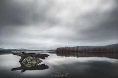 Remember Me (Simmie | Reagor - Simmulated.com) Tags: 2018 chester connecticut connecticutphotographer connecticutriver d750 december landscapephotographer lonely morning naturephotographer nikon parkerspoint rock solice somber stillness winter calm cloudy digital overcast water unitedstates us greatphotographers