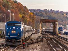 MNRR GE P32AC-DM (215) (MadMartigen) Tags: metronorthrailroad transportation train railroad amtrak amtk locomotive gep32acdm genesis ge generalelectric gegenesis p32acdm ny newyork fall autumn