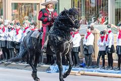 McDonald's Thanksgiving Parade 2017 (spierson82) Tags: mcdonald'sthanksgivingparade thanksgivingparade horsebackriding thanksgiving chicago parade horse statestreet animal illinois unitedstates us