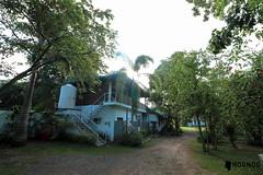La Vida Orchard Samal Island  (5 of 28) (Rodel Flordeliz) Tags: samalisland davaocity samal gardencity lavidaorchard bnb airbnb bedandbreakfast gardenresort penaplata beach summerinsamal
