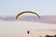 Man Paragliding in the Evening on the Sunshine Coast (do_japan) Tags: queensland australia sunshine coast man activity sport recreation person paragliding parachute equipment helmet evening sunset sky cloud