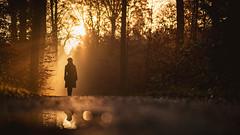 Reflection (Bastian.K) Tags: wald stuttgart forest autmun kräherwald portrait environmental sony 85mm 14 fe gm gmaster silhouette sonnenaufgang sonne nebel light licht lightray rays boots woman girl