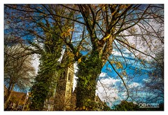 Ecumenical Drive By (OATH Photography by Alison Richards) Tags: carwindow window roadtravel spire green leaves branches clouds bluesky winterdays villagelife houses community derbyshire englandunitedkngdom trees church painterly