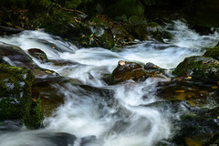 Flowing down (Rico the noob) Tags: dof rock d850 lakedistrict 2470mm nature water outdoor 2470mmf28 rocks waterfall travel published 2018 landscape river uk stones