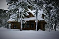 PEACE TO ALL! (The VIKINGS are Coming!) Tags: baita hutte hytte cabin vorwerk snow highsierras christmas holidays zakopane polishtatras carpathian teak architecture mountain snowshoes trek