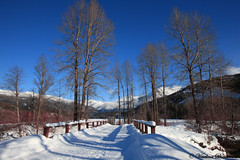 Whistler, Canada (Veselina Dimitrova) Tags: canon bridge clickcamera clickthecamera britishcolumbia canada bluesky whistler snow trees mountain