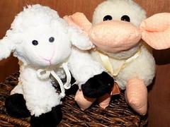 Two little Sheep (marieschubert1) Tags: sheep smileonsaturday stuffedanimals plush toy