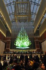 Holiday frenzy in the Rijksmuseum (Hans & Liek) Tags: nederlad netherland holland amsterdam city rijkmuseum christmastree kerstboom