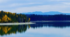 Reflection (jennbastian) Tags: autumn trees lake reflections nationalparks grandteton wyoming landscape