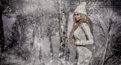 """If snowflakes were kisses...I'd send you a blizzard..."" (scarlettrose.karsin) Tags: isleofmay snow snowfall scandalize maitreya genusproject runaway sl secondlife winter seasons avatar"