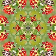 Kaleido Abstract 1925 (Lostash) Tags: art photography edited abstract kaleidoscopes patterns shapes symmetry
