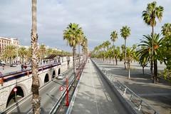 Barcelona Seaside (fxdx) Tags: barcelona seaside fz1000 road street palm trees city