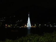 img_0662 (Ricardo Jurczyk Pinheiro) Tags: reflexo água iluminação árvoredenatal lagoarodrigodefreitas riodejaneiro