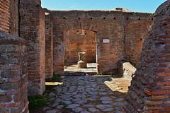 Rome / Ostia Antica /  Molino del Silvano / Silvano Mill House (Pantchoa) Tags: rome ostia ostiaantica maisondesmoulins molinodelsilvano maison moulin ruines murs briques pavés dallage sol italie europe