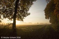 ochtendnevel3f (wouterschenk) Tags: landscape mist ochtend zon zonsopkomst